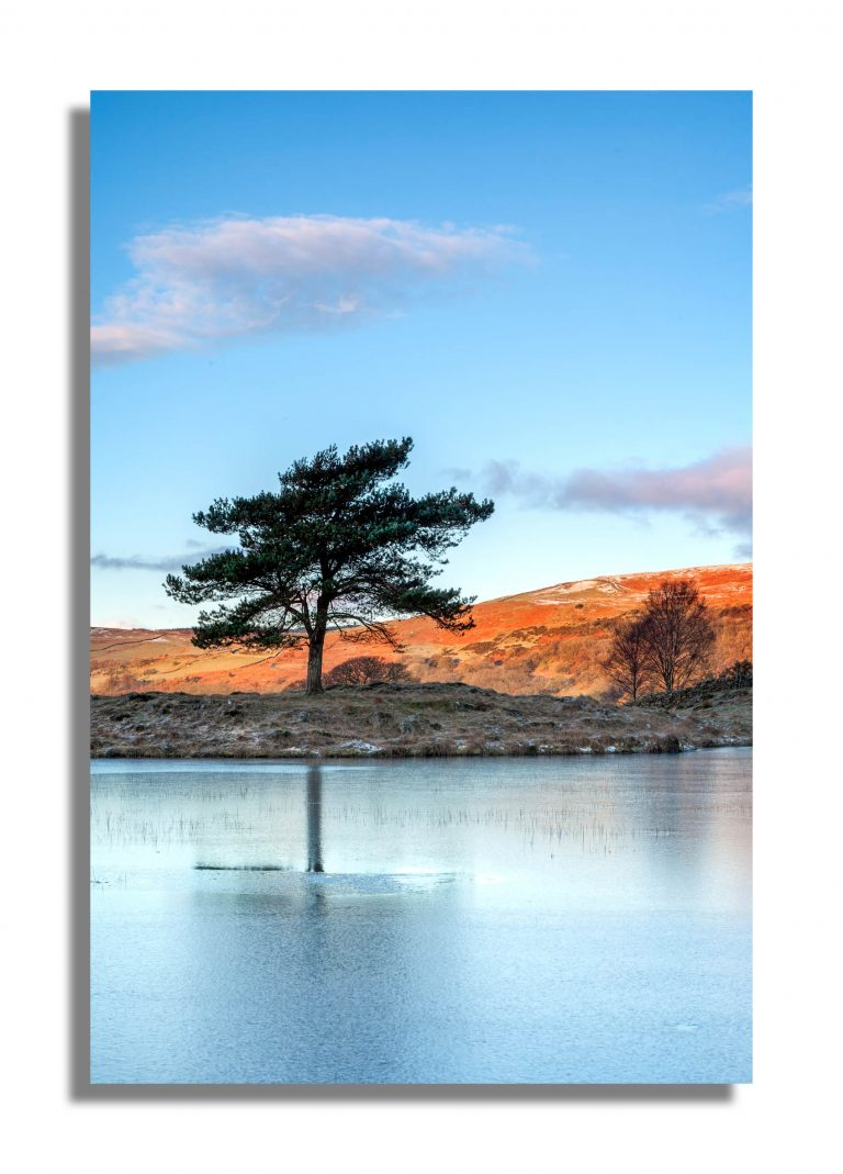 Kelly Home Tarn Landscapes Lake district