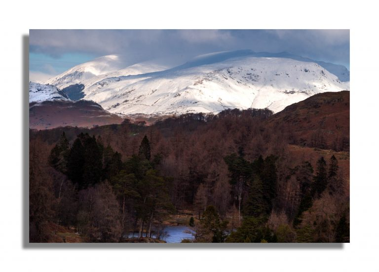 Tarn Hows Lake District Landscape Photography